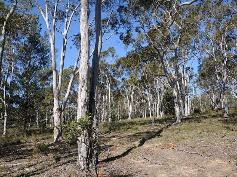 Lot 5, 500 Hanging Rock Road, Sutton Forest, NSW 2577