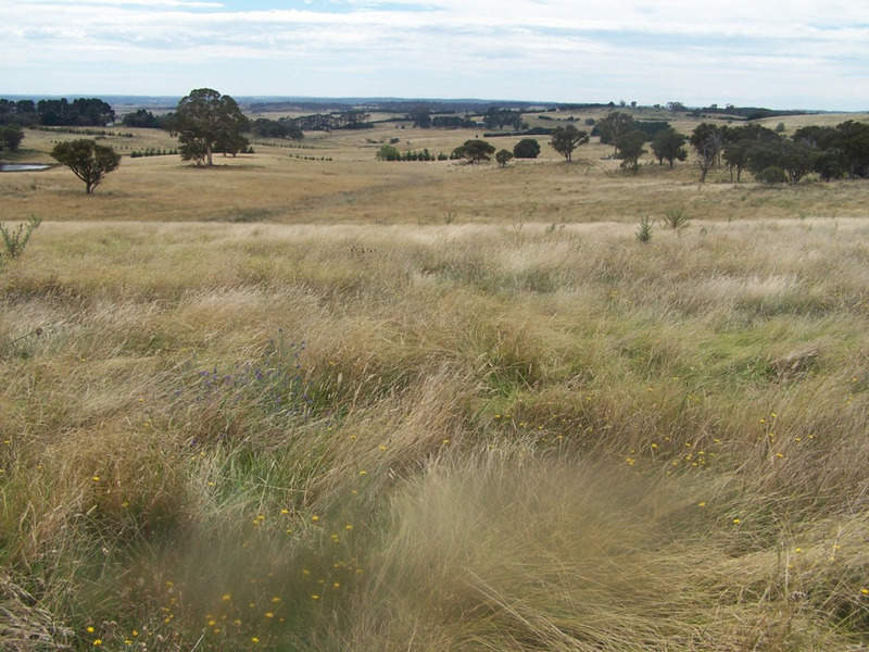 Spring View  Lot 11 Off Taralga Road, Laggan, NSW 2583