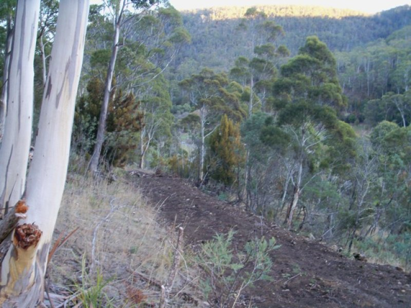 Lot 4, Plenty Valley Road, Upper Plenty, Tas 7140