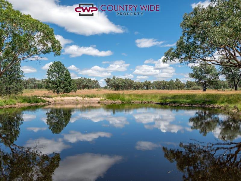 730 Wallangra Road, Ashford, NSW 2361