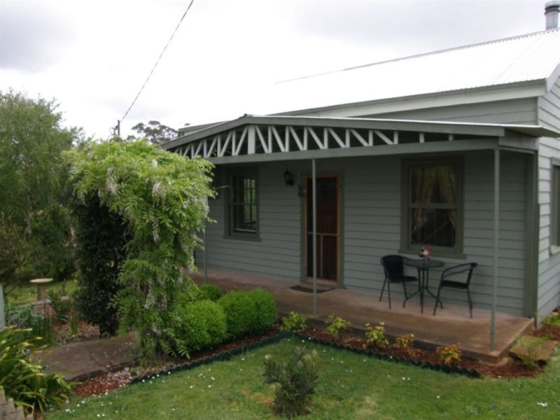 19 Winnaleah Road, Winnaleah, Tas 7265
