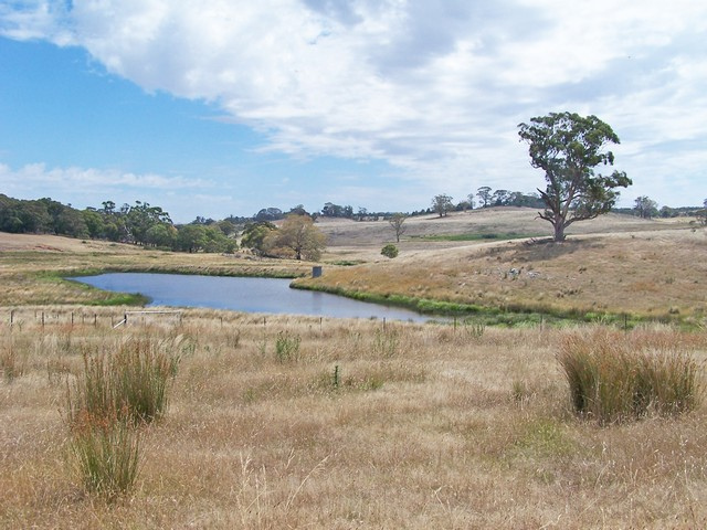290 Prices Lane, Bannister, NSW 2580