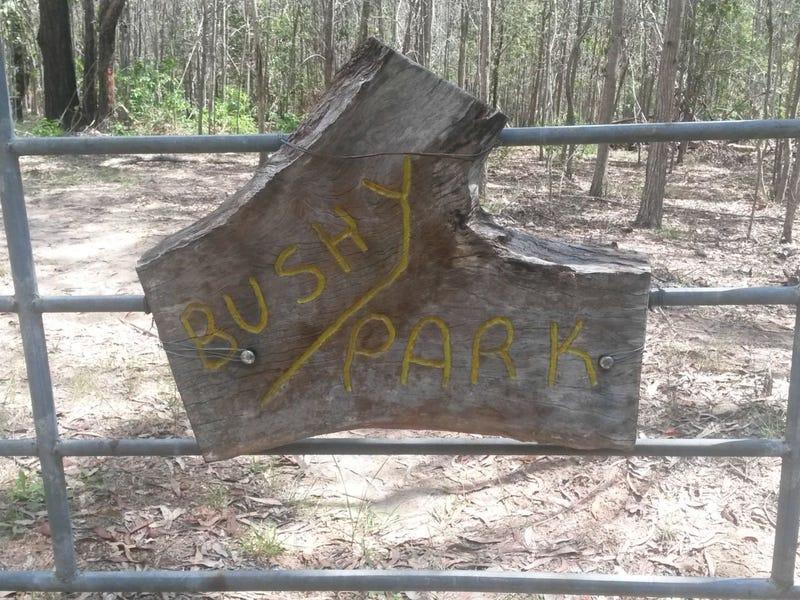 1448 Plain Station Road, Tabulam, NSW 2469