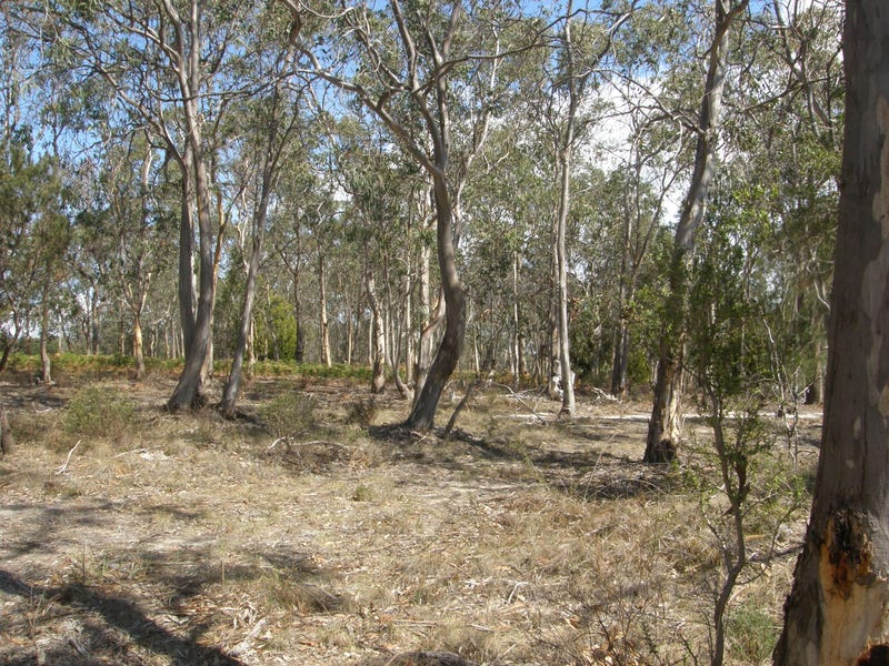 Lot 6 Gillingbrook Road, Forcett, Tas 7173