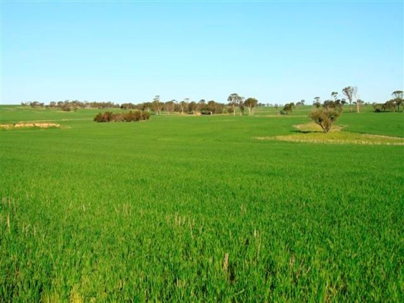 Lot 5673 Hammonds Hill Road, Quairading, WA 6383