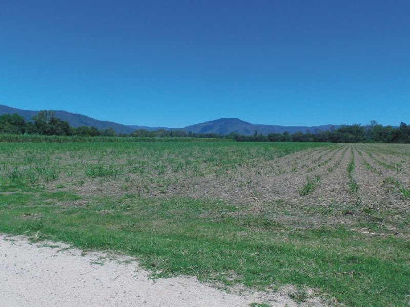 Lot 10 & 14 Stone River Road, Upper Stone, Qld 4850