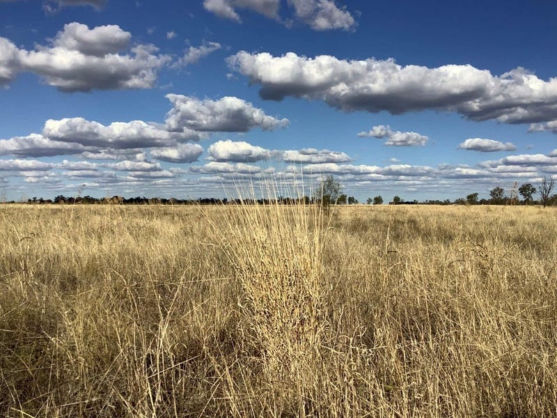 Lot 139 Wilds Road, Dalby, Qld 4405