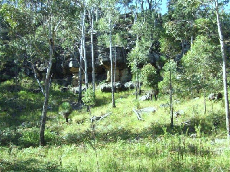 2615 Armidale Road, Blaxlands Creek, NSW 2460