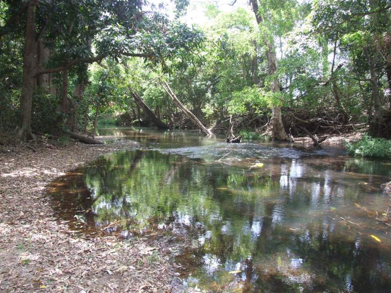Lot 11 Thorohgood Road, Kelsey Creek, Qld 4800
