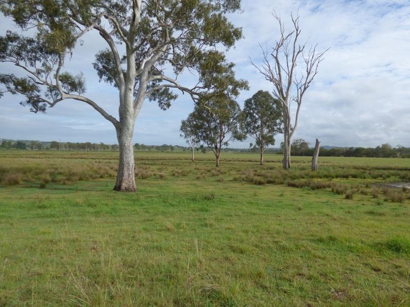Lot 49 Rifle Range Road, Allandale, Qld 4310