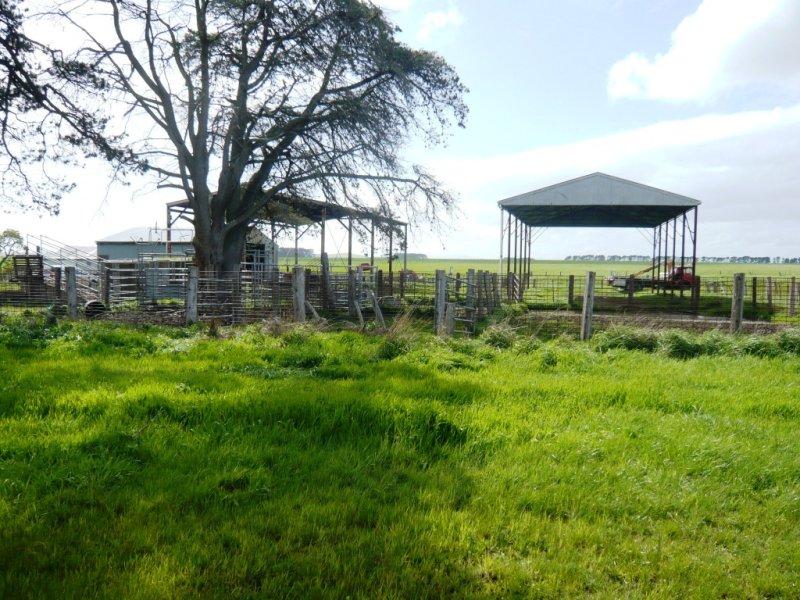 1628 Carngham-Streatham Rd, Mount Emu, Vic 3351