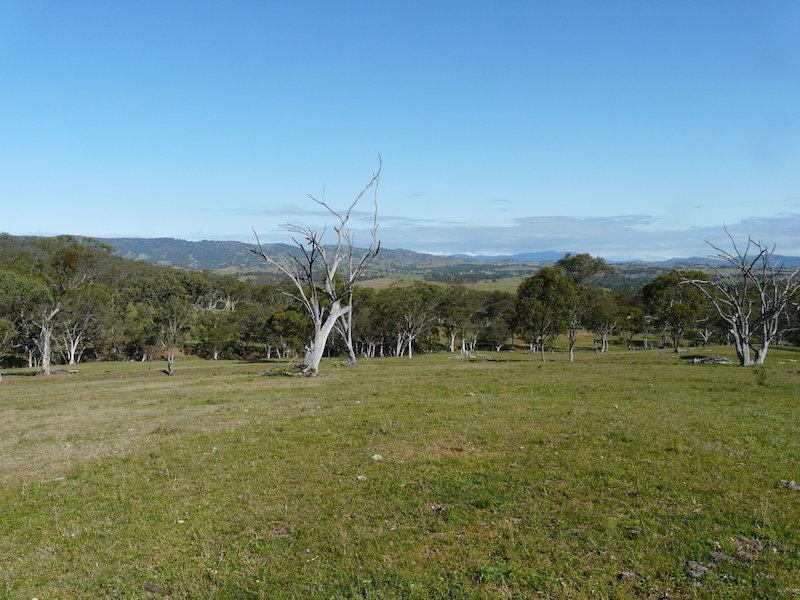 Timor Road, Timor, NSW 2338