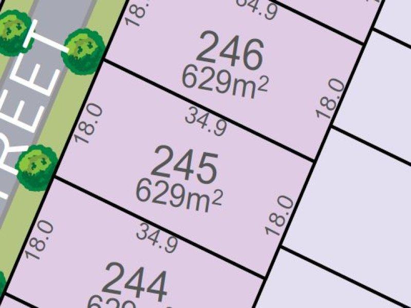 Lot 245, Vine Street, Chisholm, NSW 2322
