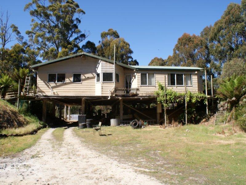 320 Allison Road, North Motton, Tas 7315