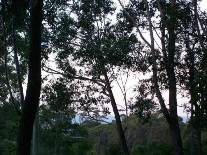 43 Village Road, South Durras, NSW 2536