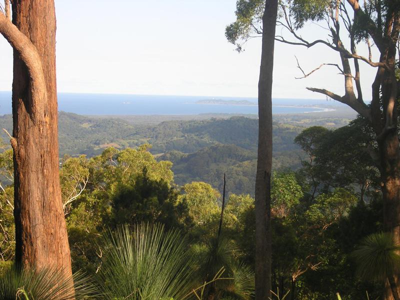 398 Pimble Valley Road, Crabbes Creek, NSW 2483