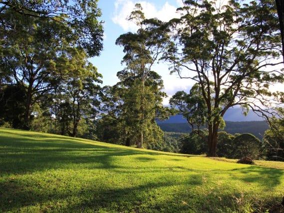 Lot 10, 2981 Mebbin Springs, Kyogle Road, Kunghur, NSW 2484