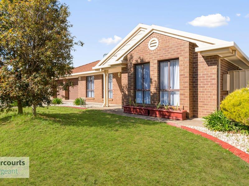63 Greenfields Drive, Andrews Farm, SA 5114