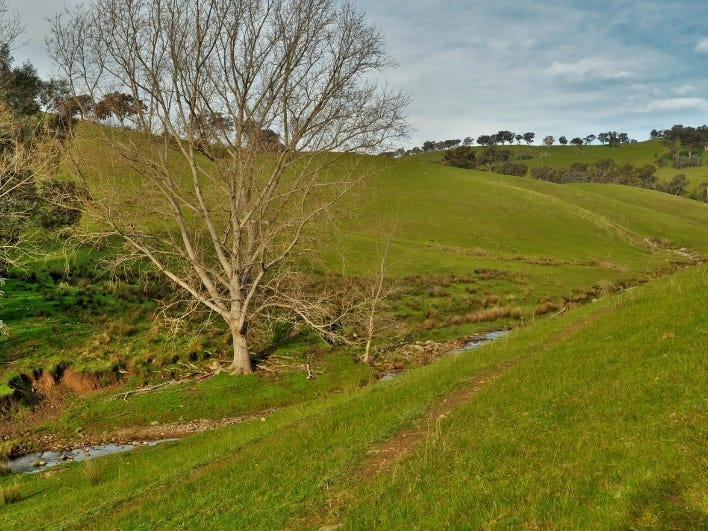 Bottom Creek - Sirls Road, Bethanga, Vic 3691