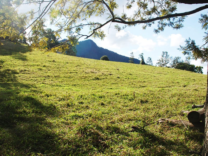 Lot 4 PALMERS ROAD, Terragon, NSW 2484