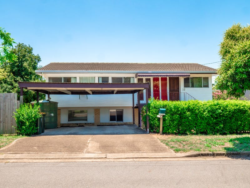 37 Pack St, Jamboree Heights, Qld 4074