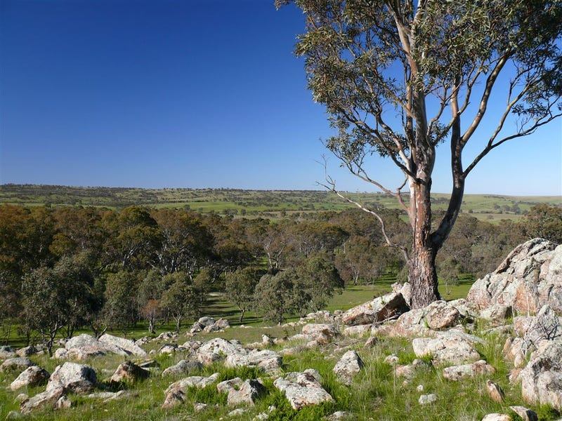 Lot 537 Murray Road, Keyneton, SA 5353