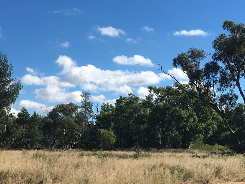 Lot 2, 104  Tuppiari Road, Jacks Creek, NSW 2390