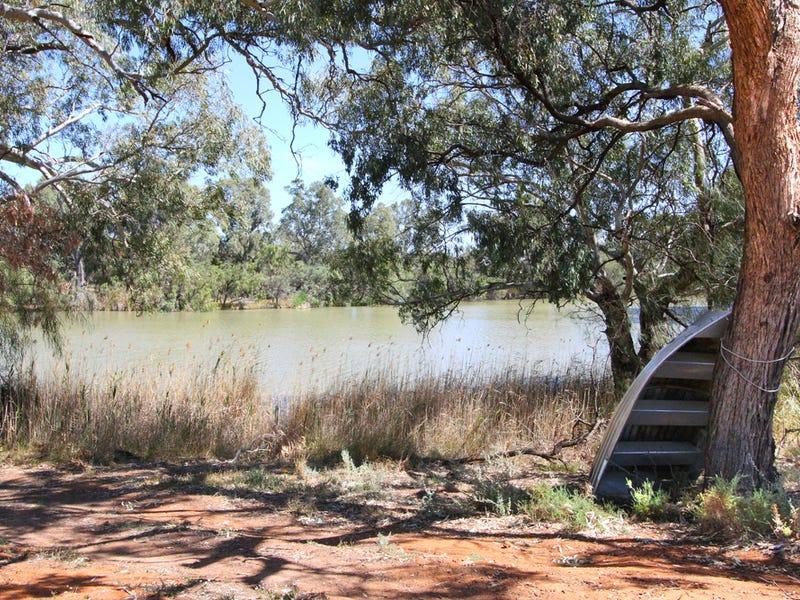 119 Tuckers Lane, Wentworth, NSW 2648