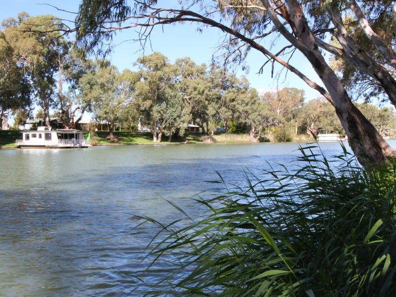 161 Darling Street, Wentworth, NSW 2648