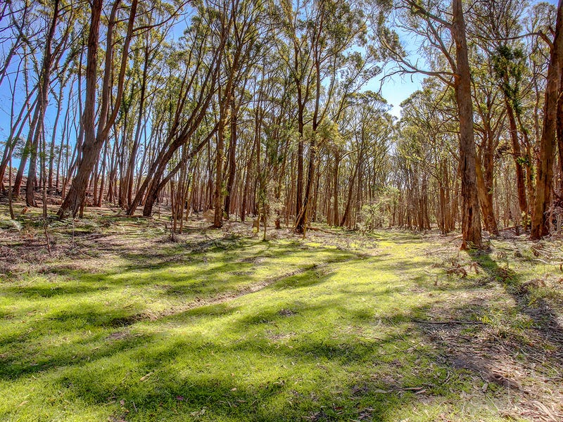 226 Warrima Drive, Tallong, NSW 2579