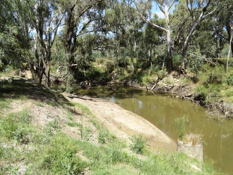 Lot 187 Walbundrie Road, Walla Walla, NSW 2659