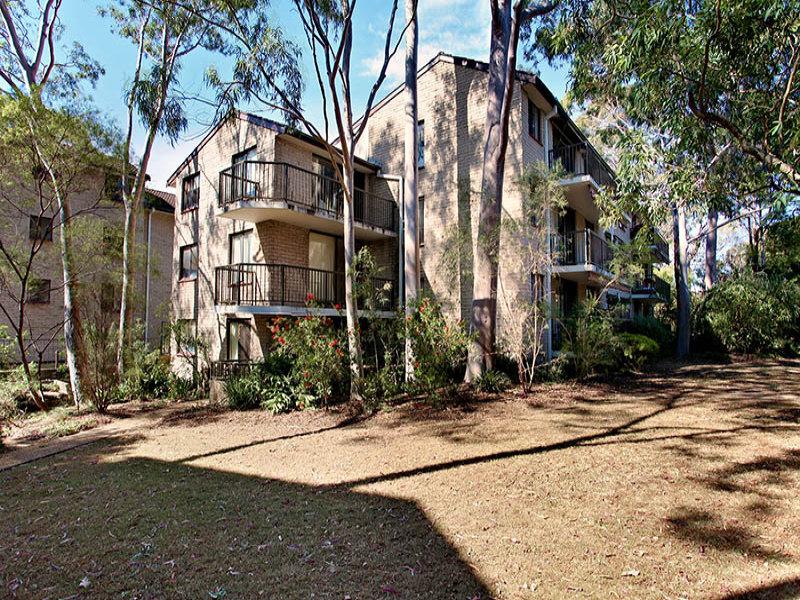 19/205 Waterloo Road, Marsfield, NSW 2122