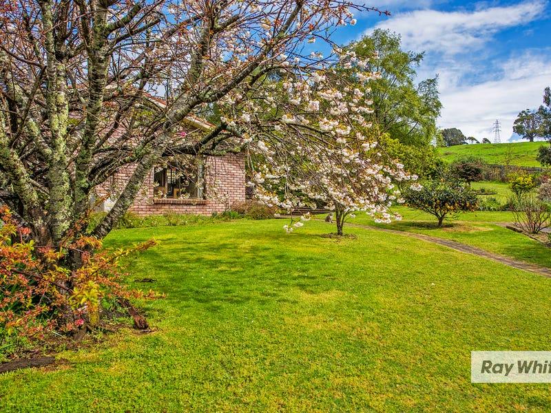 65 Tippetts Lane, Mount Hicks, Tas 7325