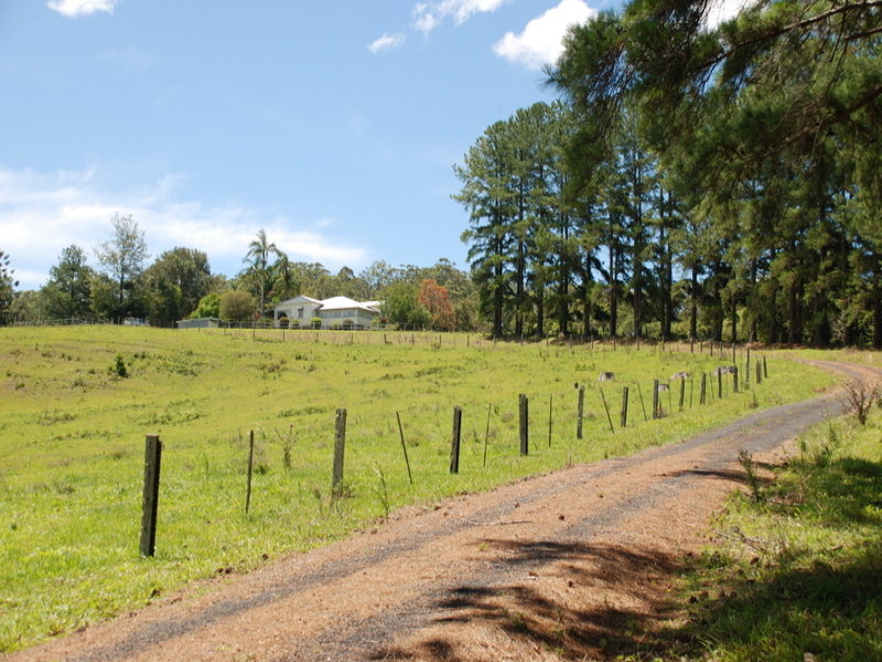 3222 (Lot 2) Kyogle Road,'Burrellea', Mount Burrell, NSW 2484
