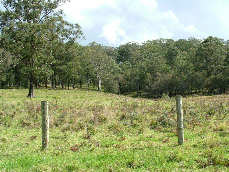 LOT 3 CRAVEN PLATEAU Road, Craven Plateau, NSW 2422