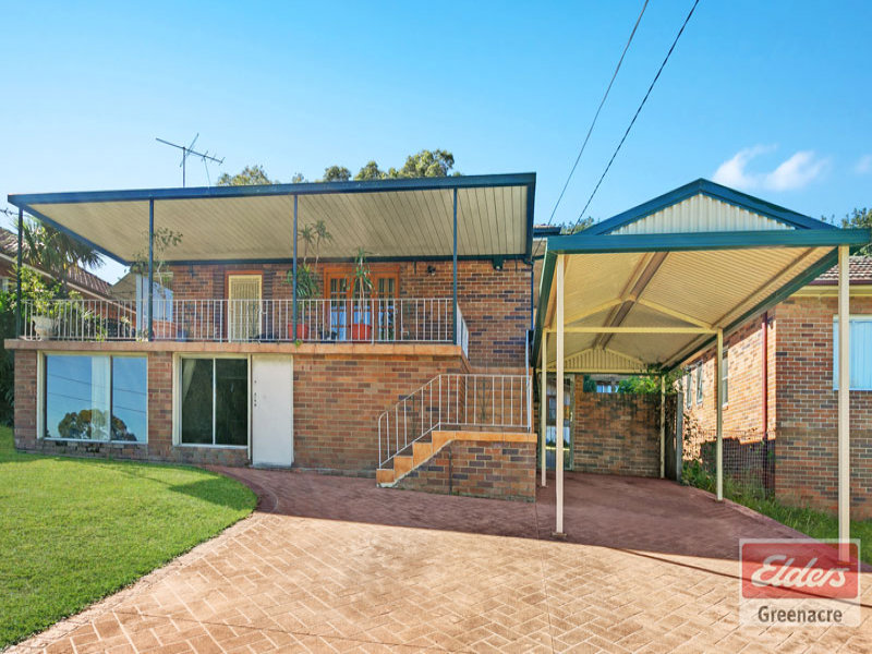 16 Harold Street, Mount Lewis, NSW 2190