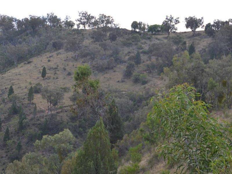 """Lot 2/ """"Cooees Mountain"""" Yarrabin Road, Yarrabin, NSW 2850"""