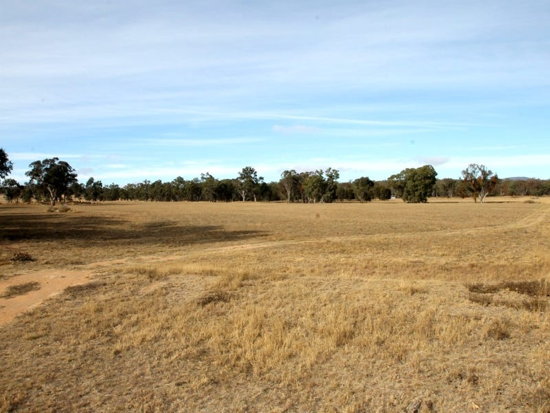 166 Werribee Road, Premer, NSW 2381
