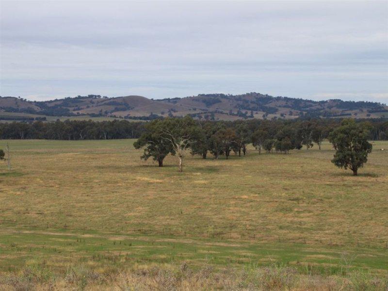 Oberne North, 31 Gregadoo-Ladysmith Road, Gregadoo, NSW 2650