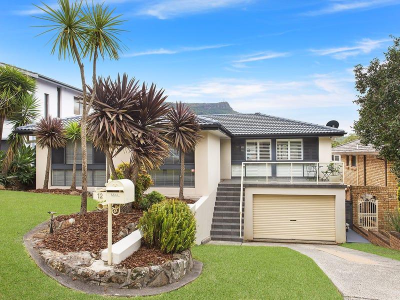 12 Blanchard Crescent, Balgownie, NSW 2519