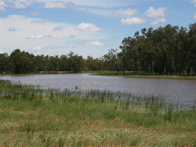 Address available on request, Mitchell, Qld 4465