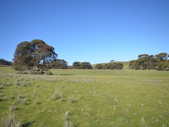"""Kellys"" Cattle Station Road, Mount Bryan, SA 5418"
