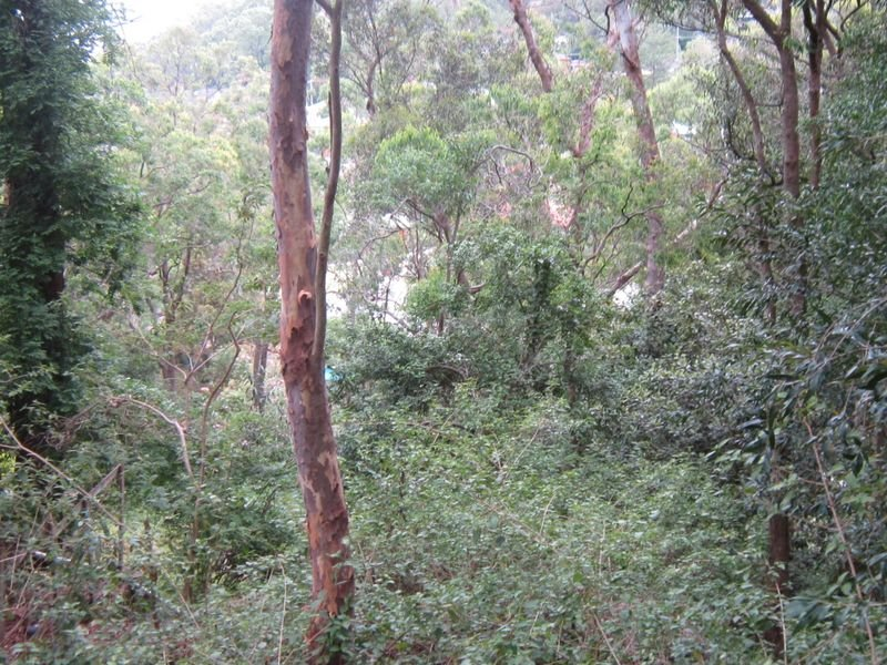 103 The Broadwaters, Tascott, NSW 2250