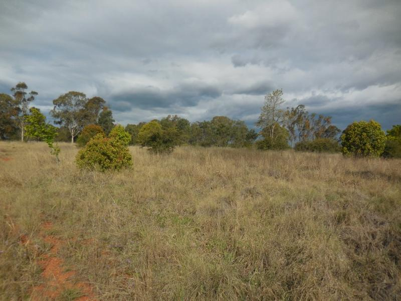 Lot 1 Knight, Kingaroy