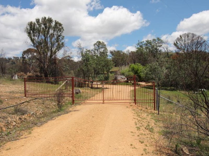 99 Whiskers Creek Road, Carwoola, NSW 2620