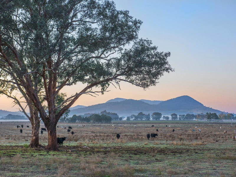 Lot 12 Bombira Estate, Mudgee, NSW 2850