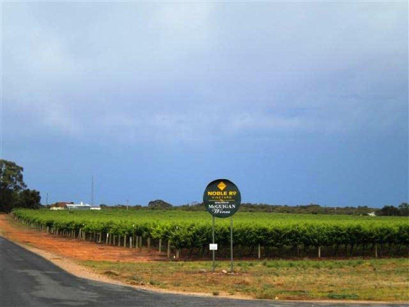 Noble Road Vineyard, Ballantine and Noble Road, Waikerie, SA 5330