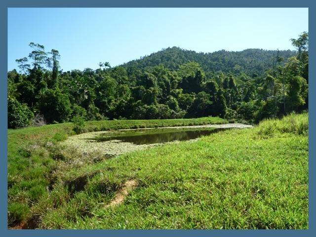 Lot 14, Bingil Bay Road, Bingil Bay, Qld 4852