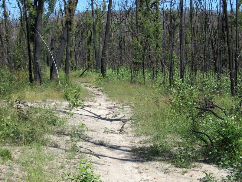 3219 Old Tenterfield Road, Busbys Flat, NSW 2469
