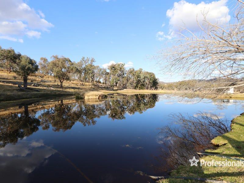 Raino 906 Grove Road, Tingha, NSW 2369